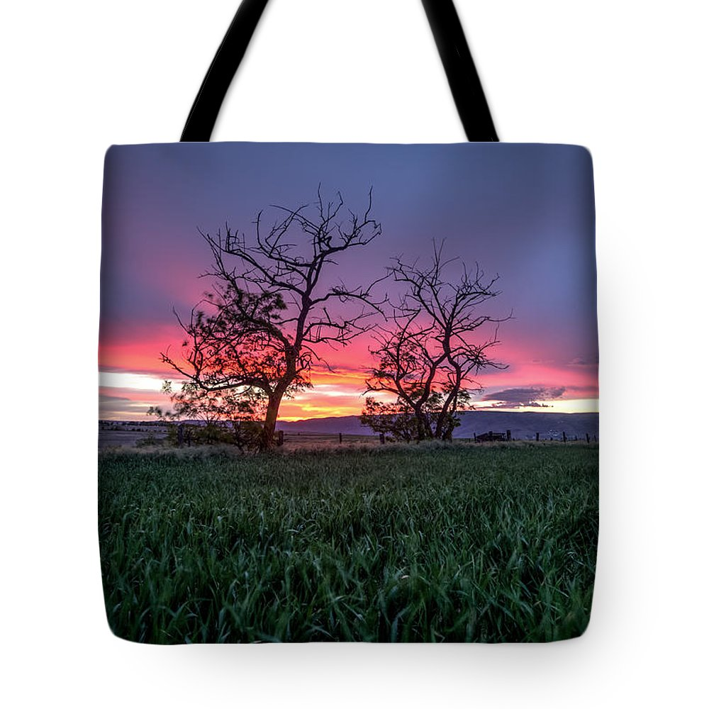 Lewiston Idaho Two Trees 2 Green Crop Field Valley Lc Palouse Dusk Purple Red Landscape Tote Bag featuring the photograph Two Trees In A Purple Sunset by Brad Stinson