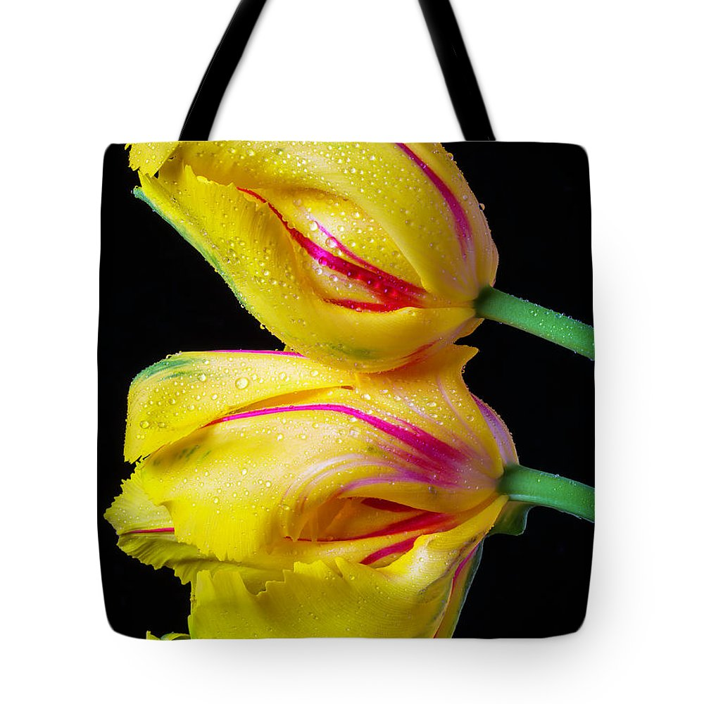 Green Tote Bag featuring the photograph Two Yellow French Tulips by Garry Gay
