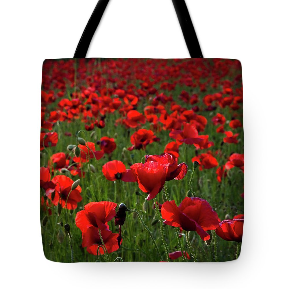 Umbria Tote Bag featuring the photograph Umbria Poppies 3 by Roger Mullenhour