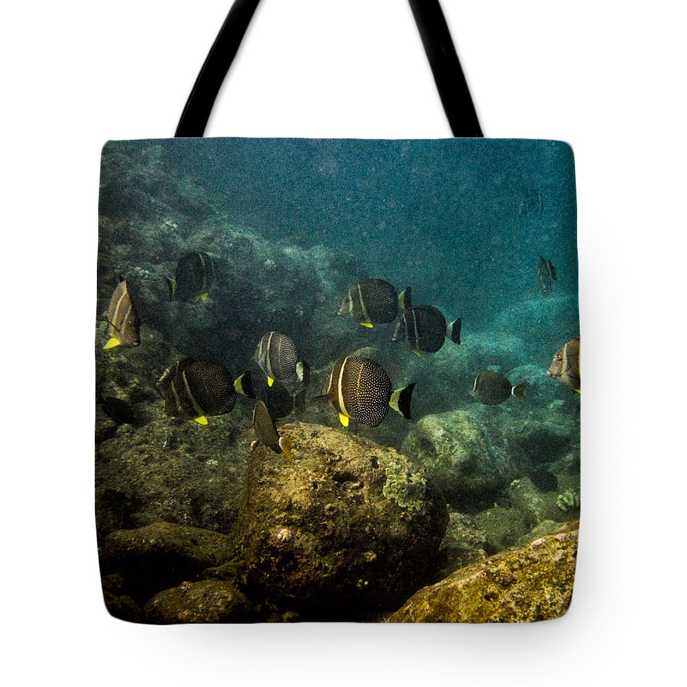 Hawaii Tote Bag featuring the photograph Under The Sea Scape by Doug Shanaman