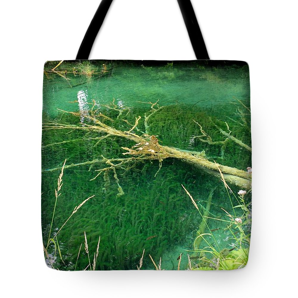 Plitvice Tote Bag featuring the photograph Underwater Tree by Piotr Kuzniar