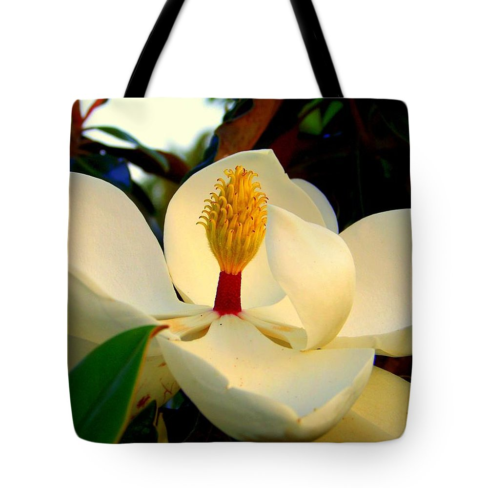 Magnolia Flowers Tote Bag featuring the photograph Unfolding Beauty by Karen Wiles