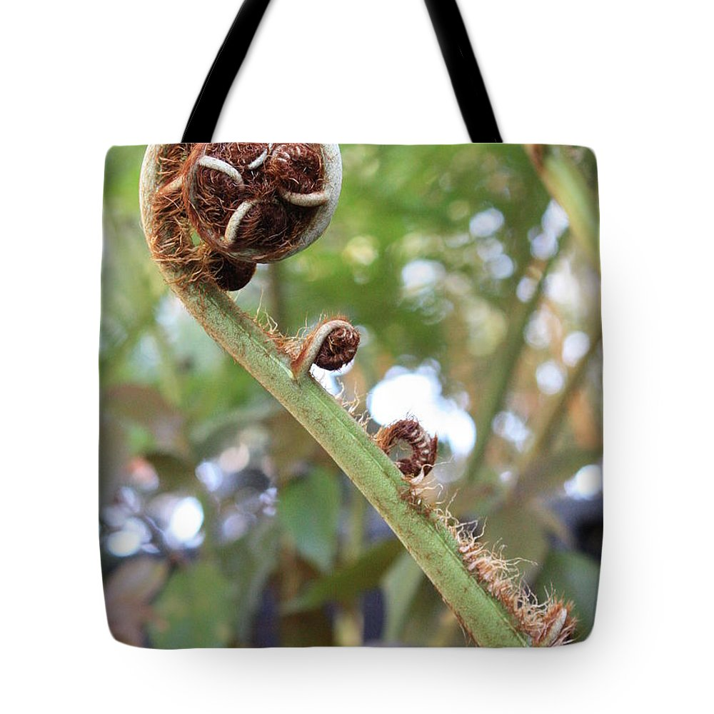 Nature Tote Bag featuring the photograph Unfurling by Carol Groenen
