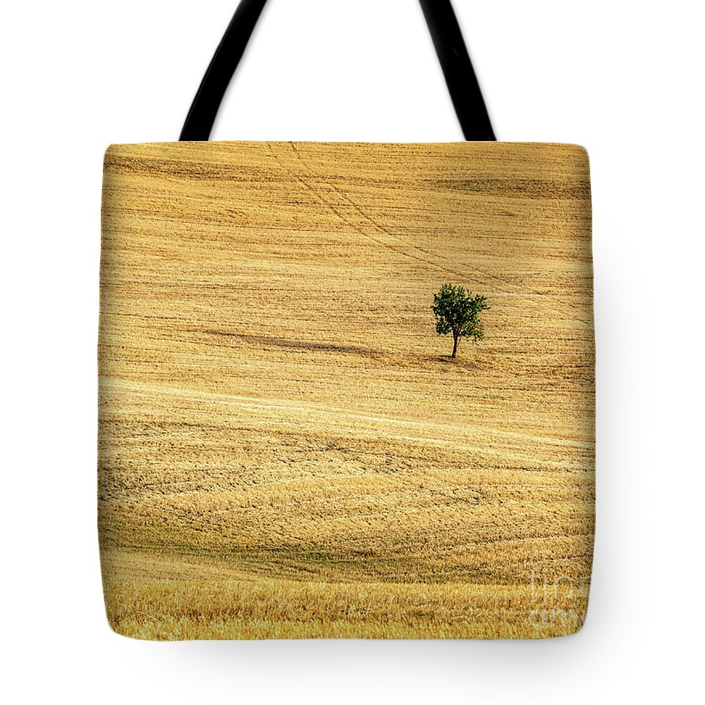 Tuscany Tote Bag featuring the photograph Unique by Delphimages Photo Creations