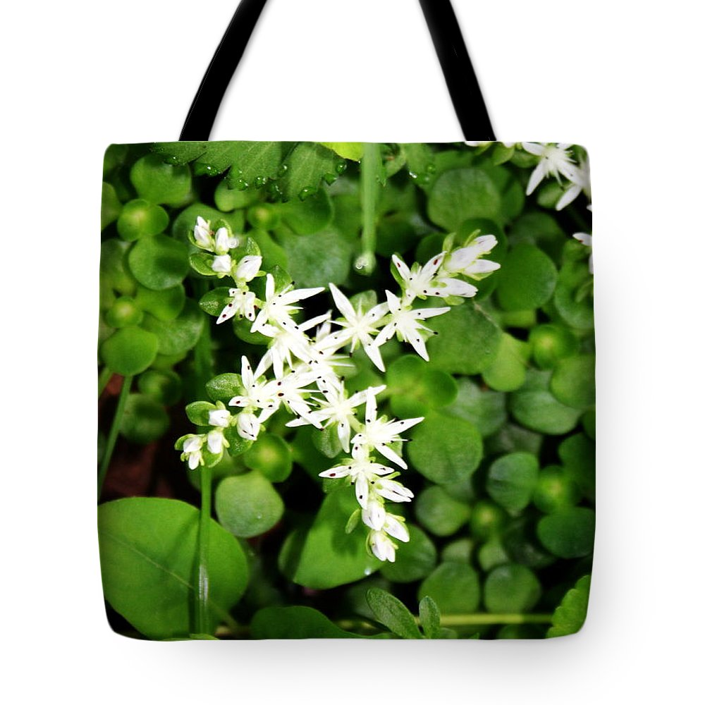 Flower Tote Bag featuring the photograph Unknown Wildflower by Rebecca Smith