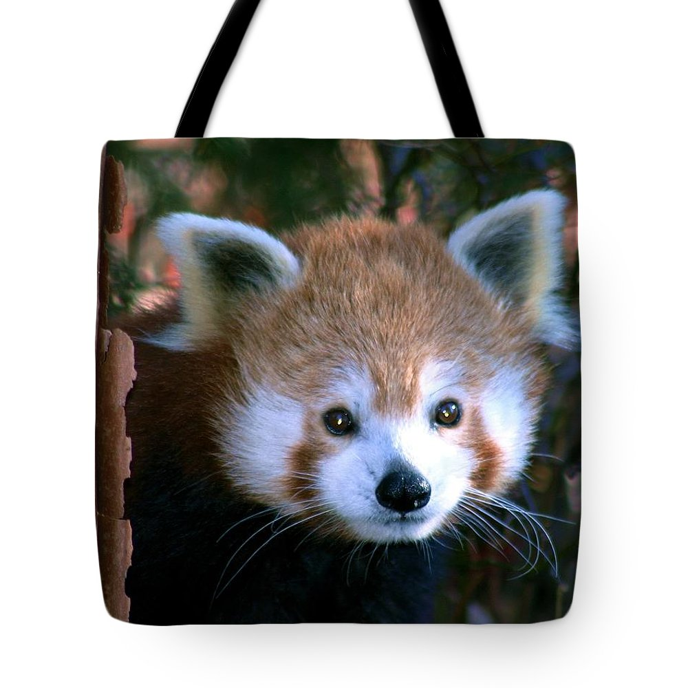 Red Panda Tote Bag featuring the photograph Unsuspicious by Mitch Cat