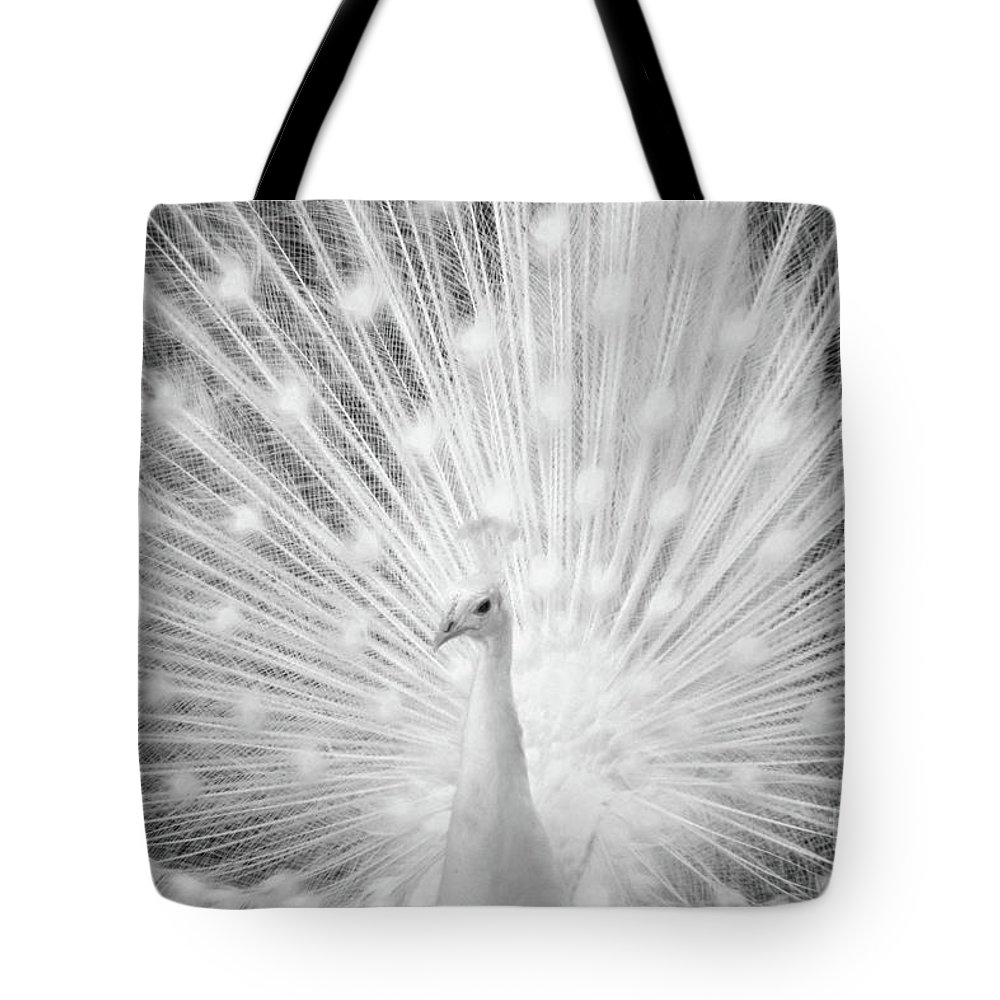 Peacock Tote Bag featuring the photograph Unusually Beautiful by Third Eye Perspectives Photographic Fine Art