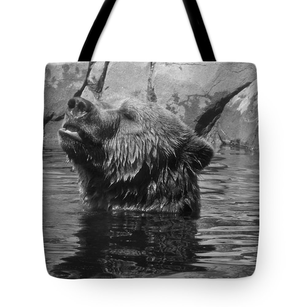 Black & White Tote Bag featuring the photograph Up From A Dip by Sara Raber