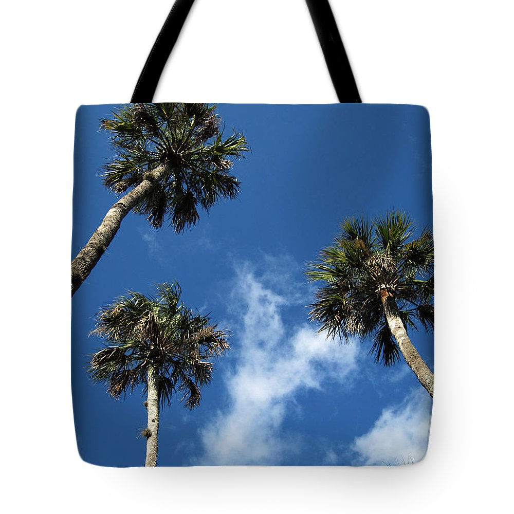 Photography Tote Bag featuring the photograph Up To The Sky Palms by Susanne Van Hulst