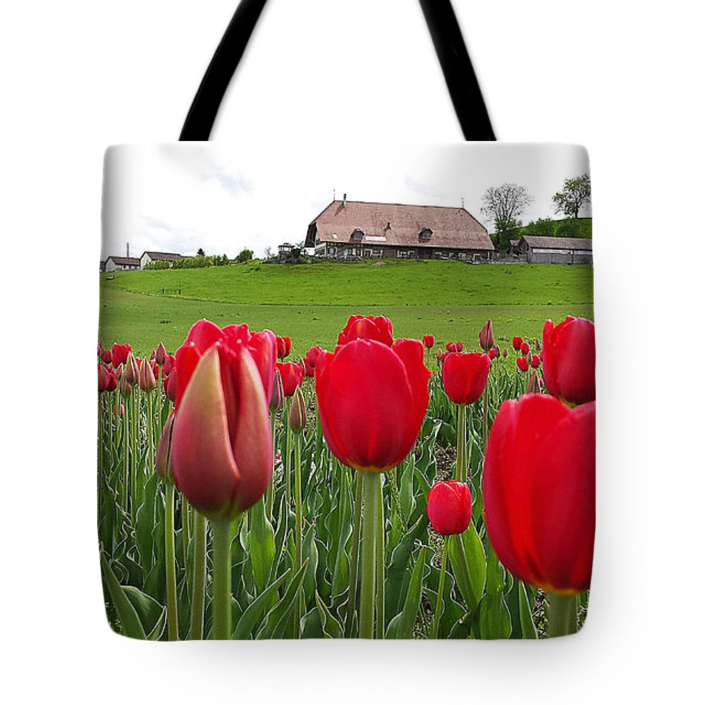 Tulip Tote Bag featuring the photograph Upbeat Season Greetings 1 by Felicia Tica