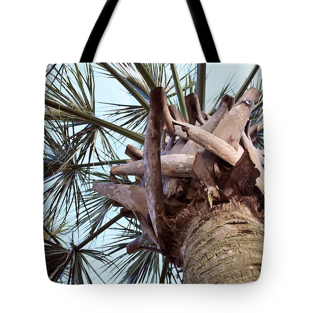 Landscape Tote Bag featuring the photograph Upward Palm by Mary Haber