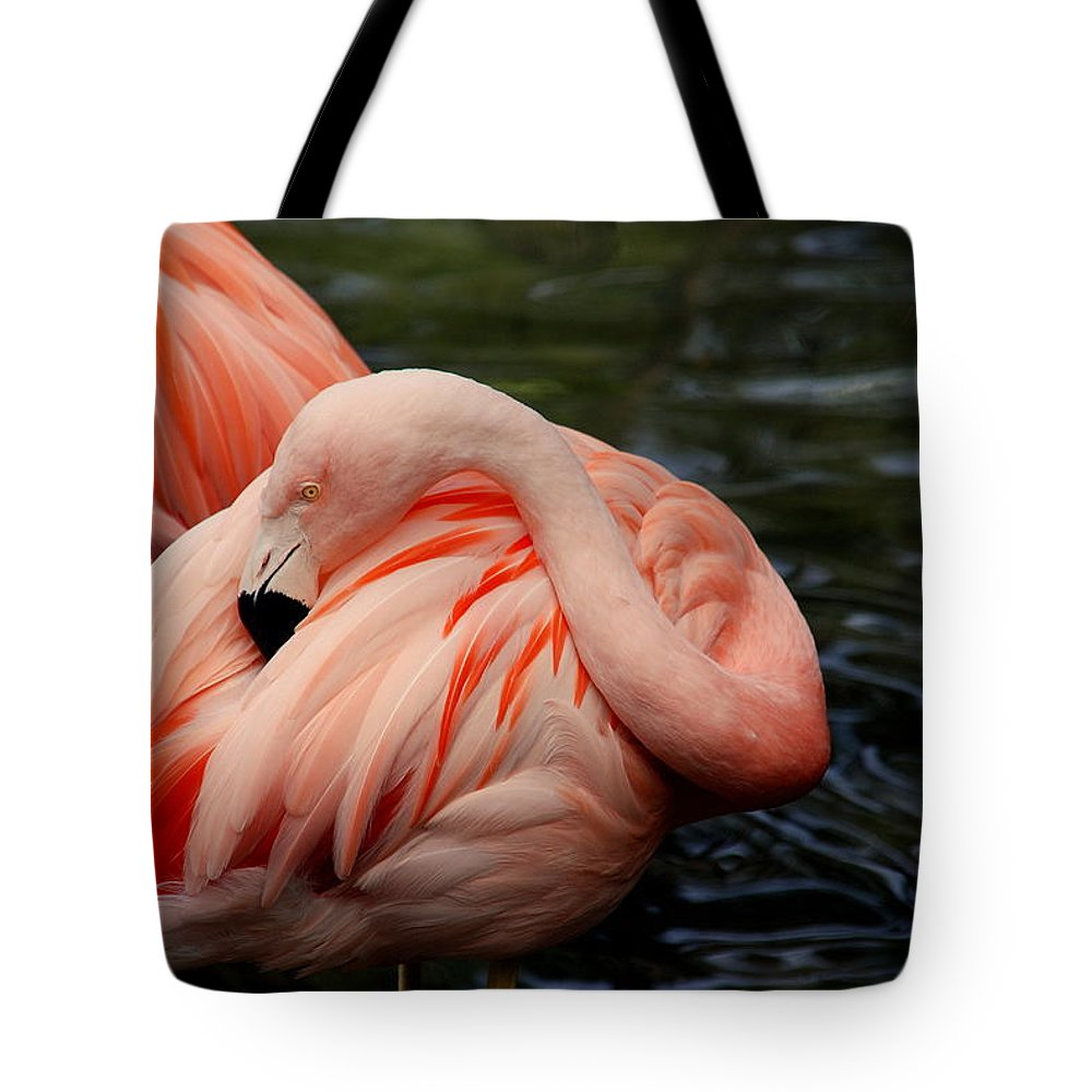 Flamingo Tote Bag featuring the photograph Vanity by Susanne Van Hulst