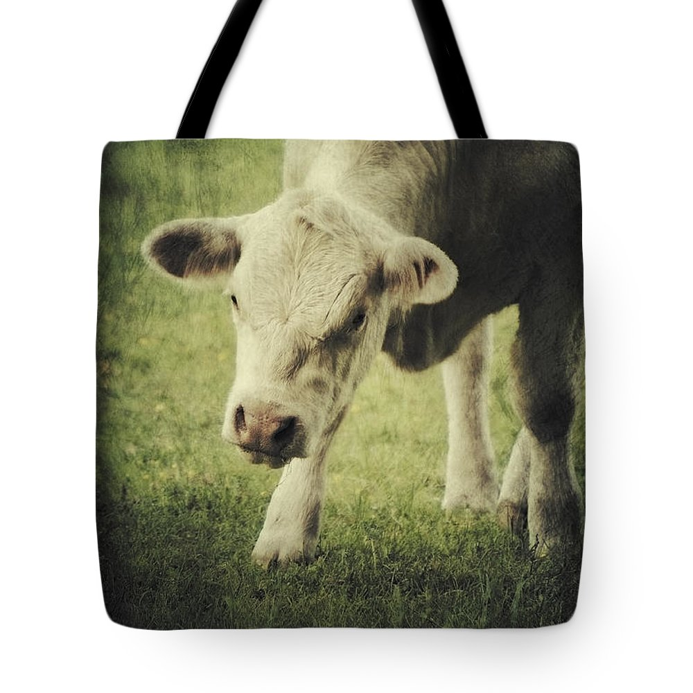 Farm Tote Bag featuring the photograph Cow by Angela Doelling AD DESIGN Photo and PhotoArt