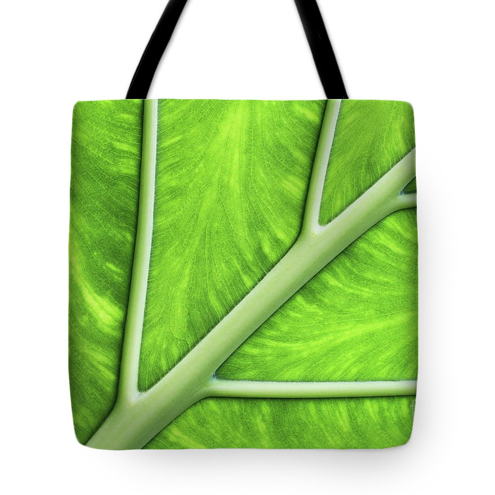 Leaf Tote Bag featuring the photograph Veins Of Life #2 by Judy Whitton