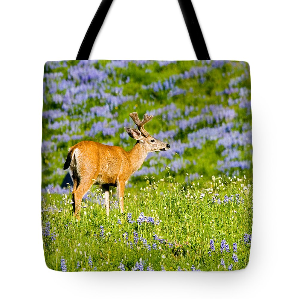 Deer Tote Bag featuring the photograph Velvet On Lupine by Mike Dawson
