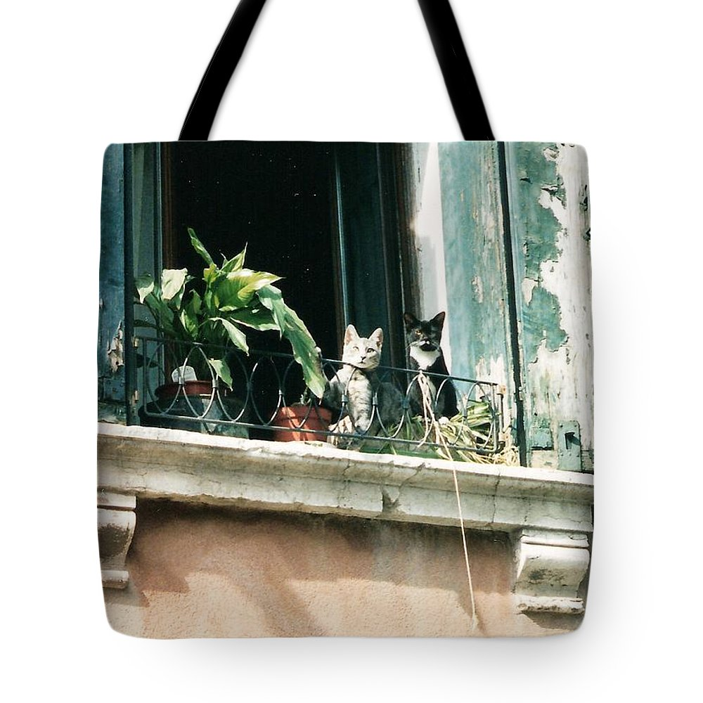 Venice Tote Bag featuring the photograph Venetian Cats by Lauri Novak