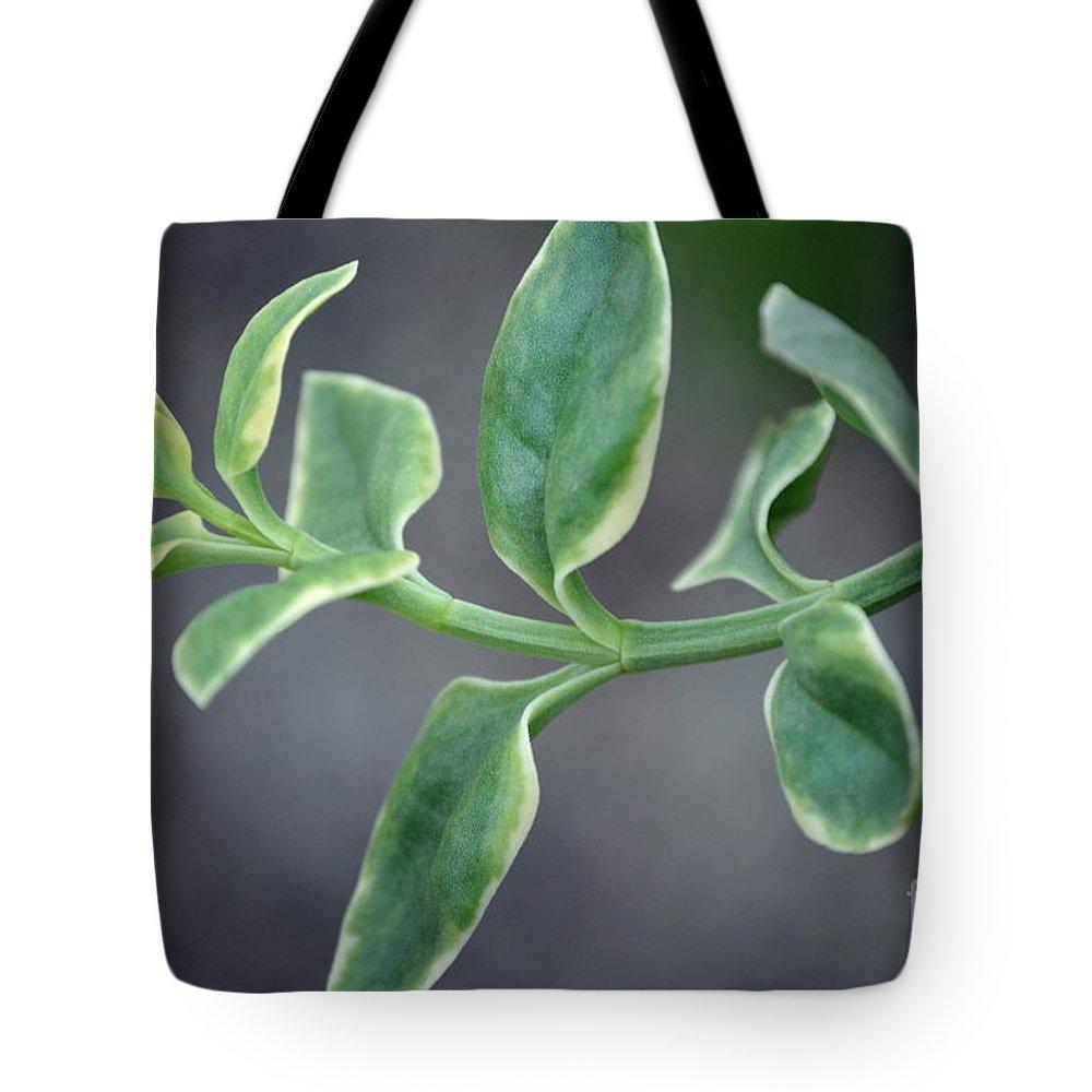 Tote Bag featuring the photograph Verde by Lenin Caraballo
