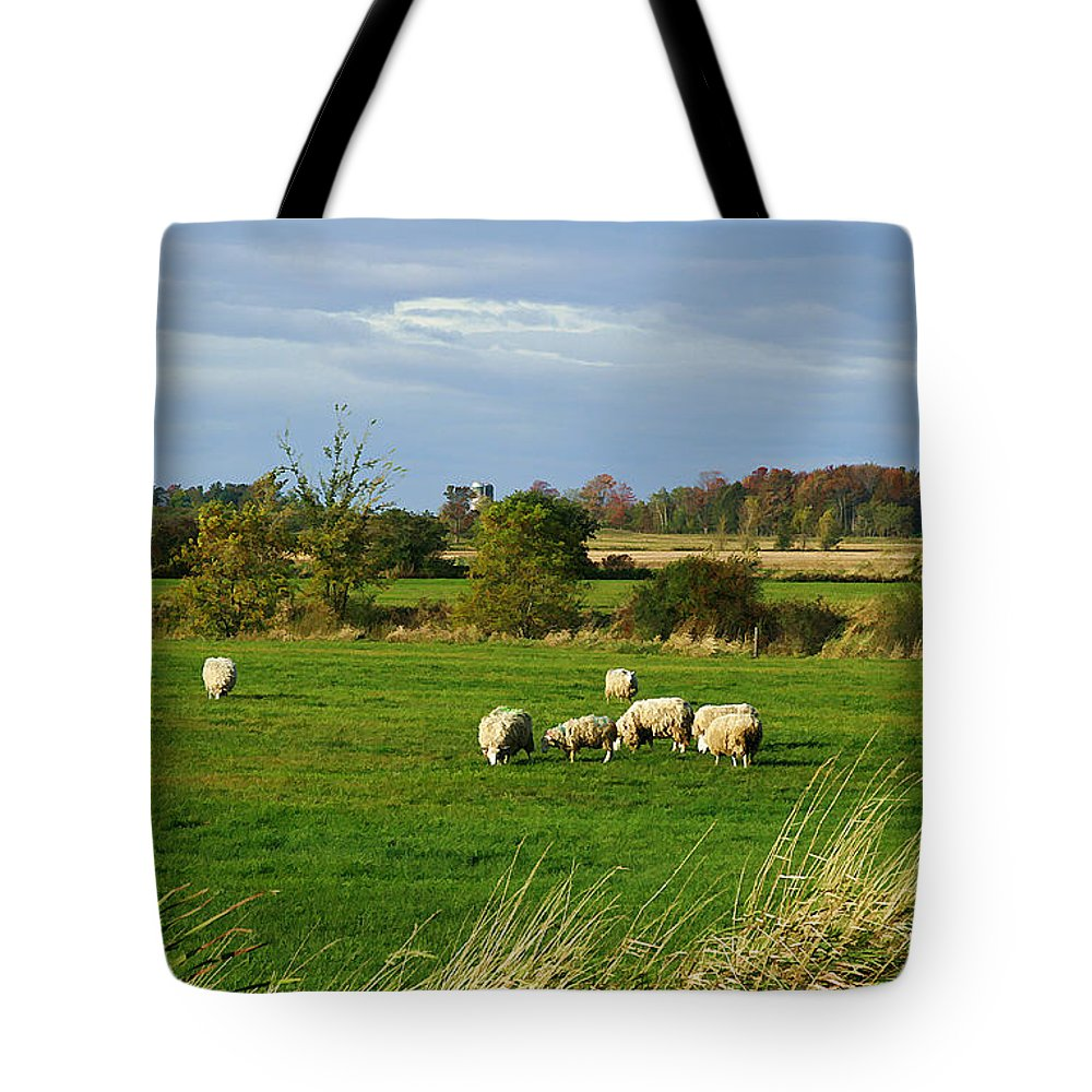 Rural Tote Bag featuring the photograph Vermont Country Life by Deborah Benoit