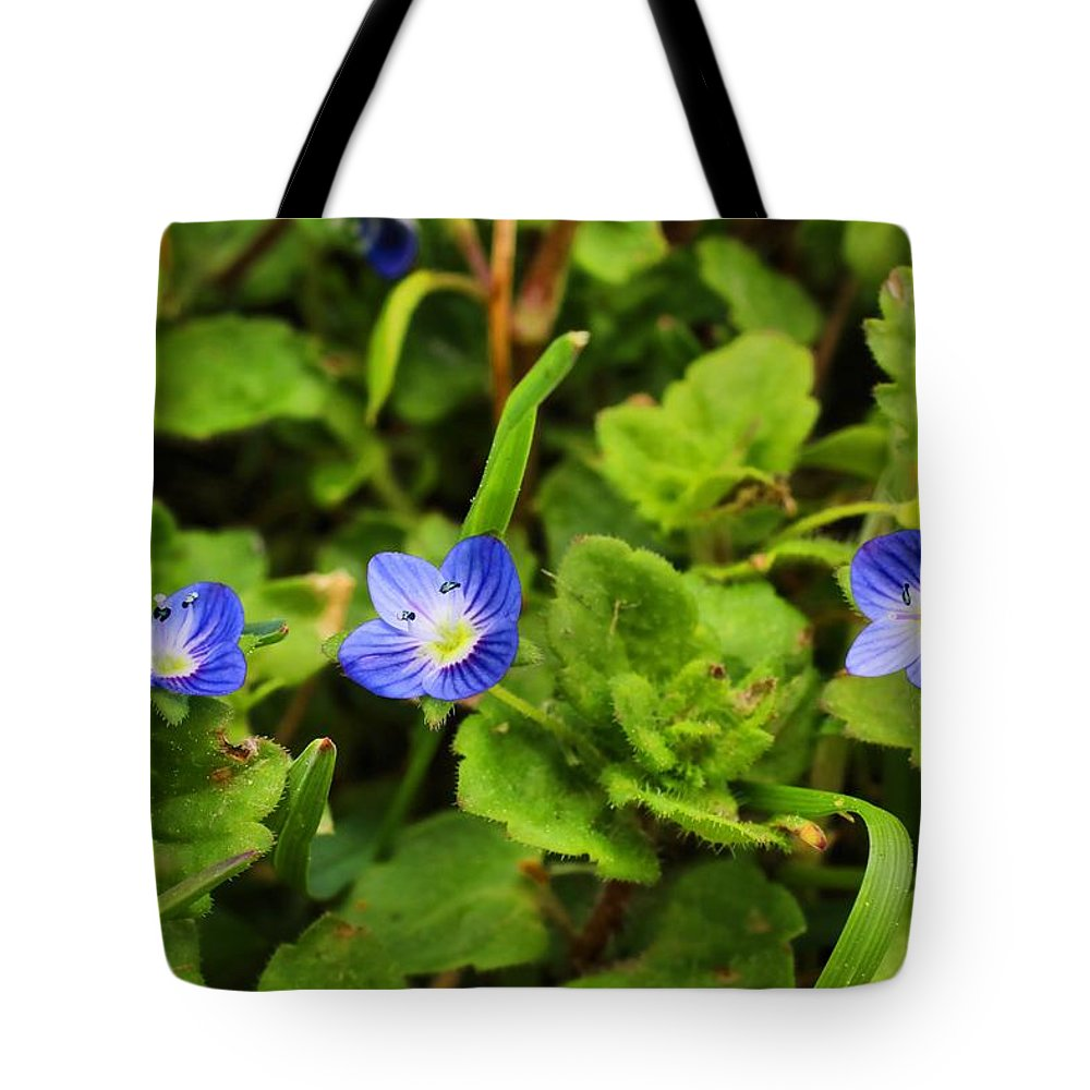 Speedwell Tote Bag featuring the photograph Veronica Speedwell by Kathryn Meyer
