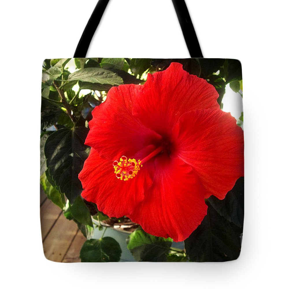 Flower Tote Bag featuring the photograph Vibrancy by Laura Birr Brown
