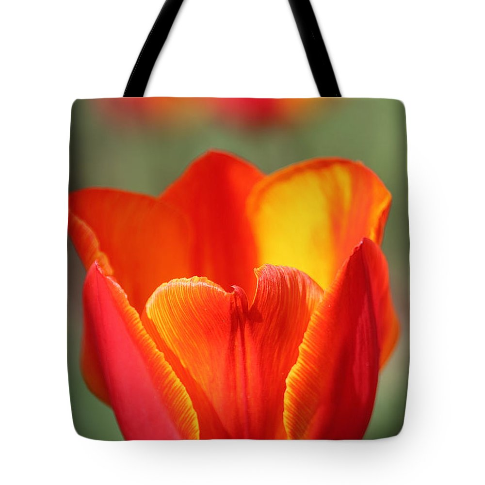 Flower Tote Bag featuring the photograph Vibrantly Yours by Susan Herber