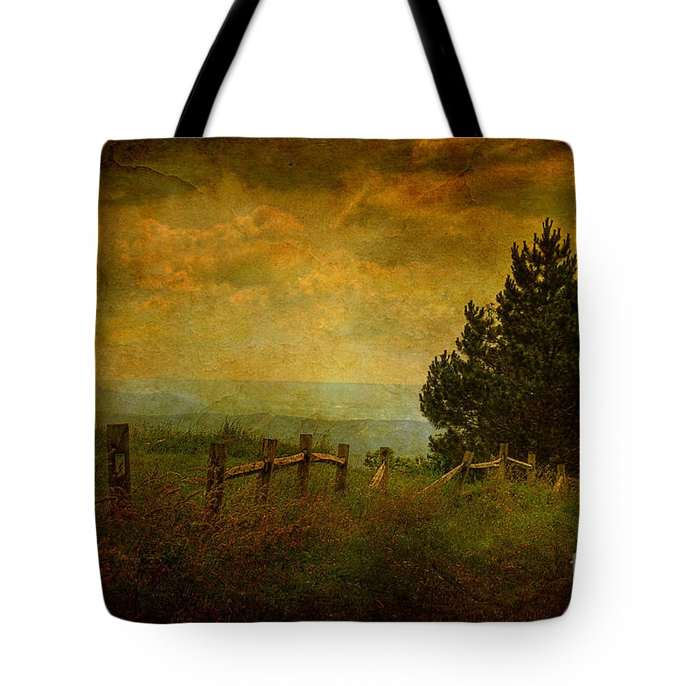 Fence Tote Bag featuring the photograph View From The Top by Lois Bryan