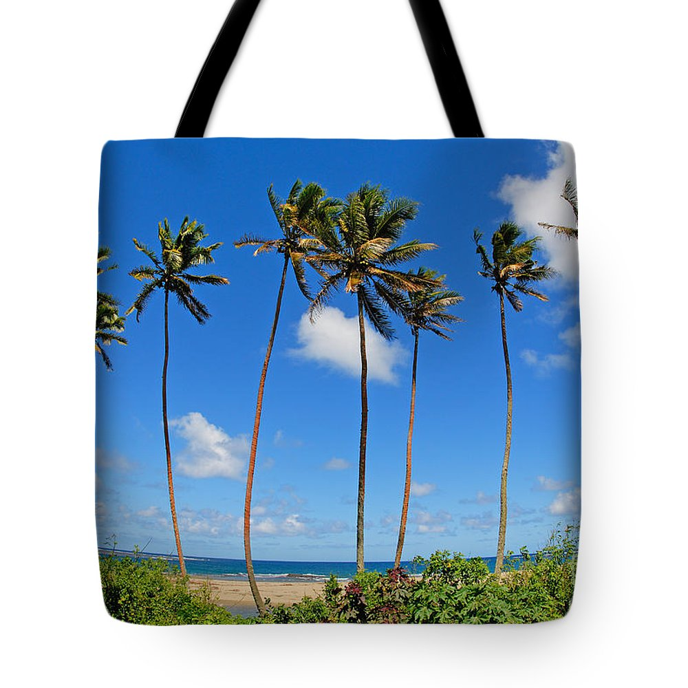 Afternoon Tote Bag featuring the photograph View Of Fiji by Himani - Printscapes