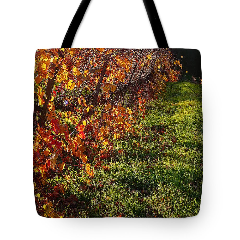 California Wine Country Tote Bag featuring the photograph Vineyard 13 by Xueling Zou