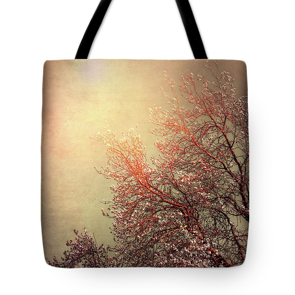 Vintage Tote Bag featuring the photograph Vintage Cherry Blossom by Wim Lanclus