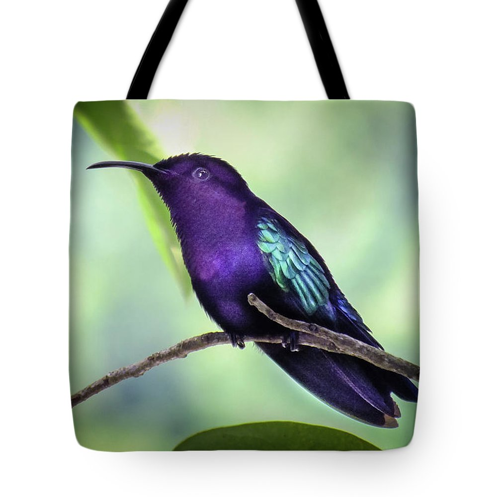 Violet Hummingbirds Tote Bag featuring the photograph Violaceous Hummer by Karen Wiles