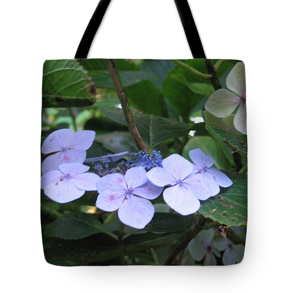 Violets Tote Bag featuring the photograph Violets O The Green by Kelly Mezzapelle
