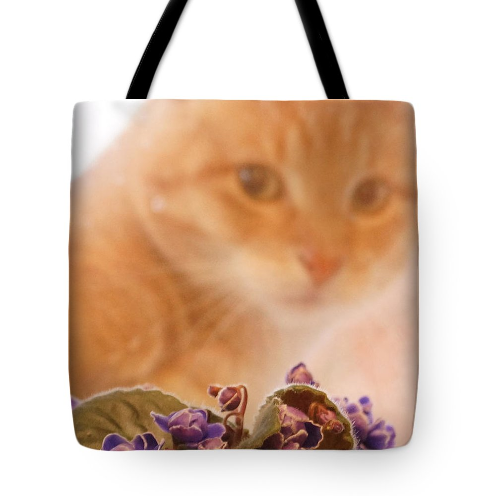Orange Tabby Cat Tote Bag featuring the digital art Violets with Cat by Jana Russon
