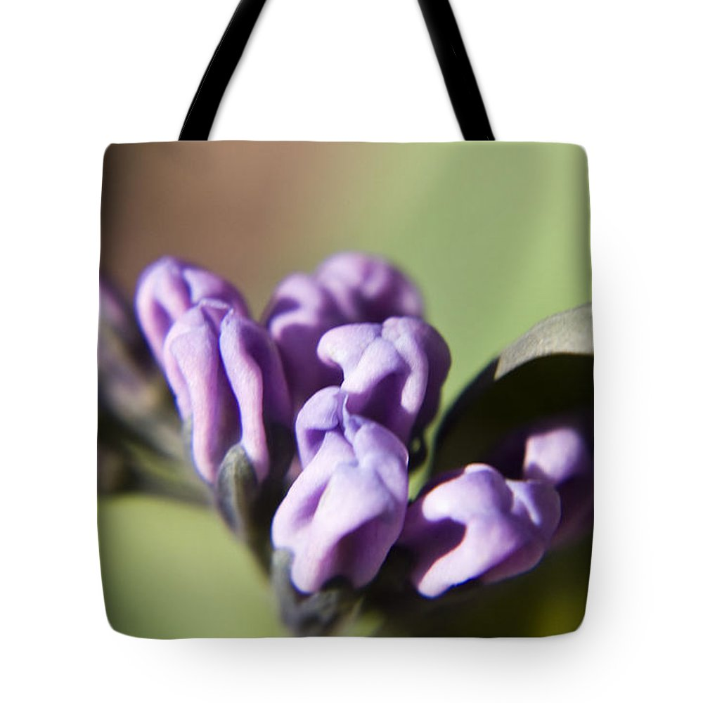 Virginia Tote Bag featuring the photograph Virginia Bluebell Buds by Teresa Mucha