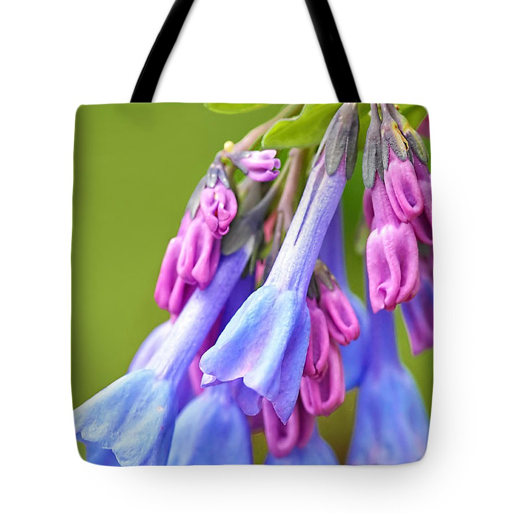 Wildflowers Tote Bag featuring the photograph Virginia Bluebell by Regina Geoghan