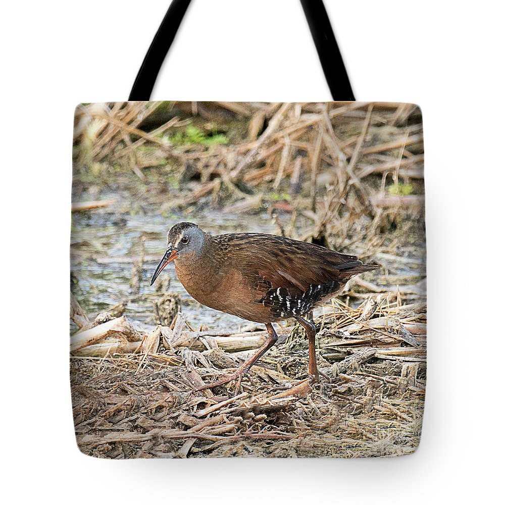 Bird Tote Bag featuring the photograph Virginia Rail by Dennis Hammer