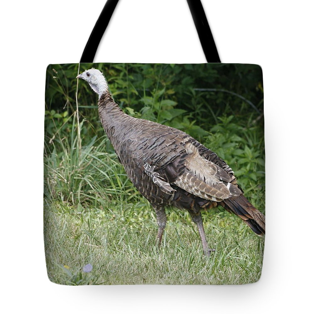 Turkey Tote Bag featuring the photograph Visions Of Turkey by Adam Schneider