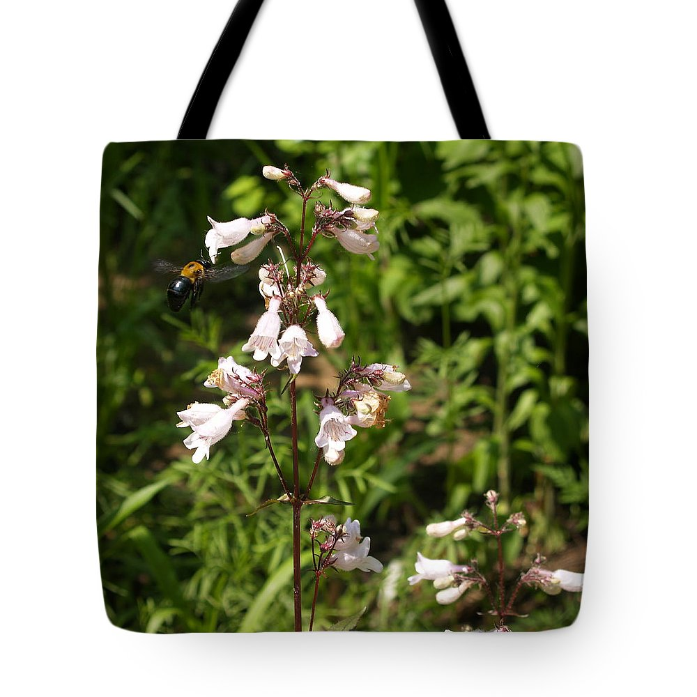 Bumblebee Tote Bag featuring the photograph Visitor by Adams Art Photography