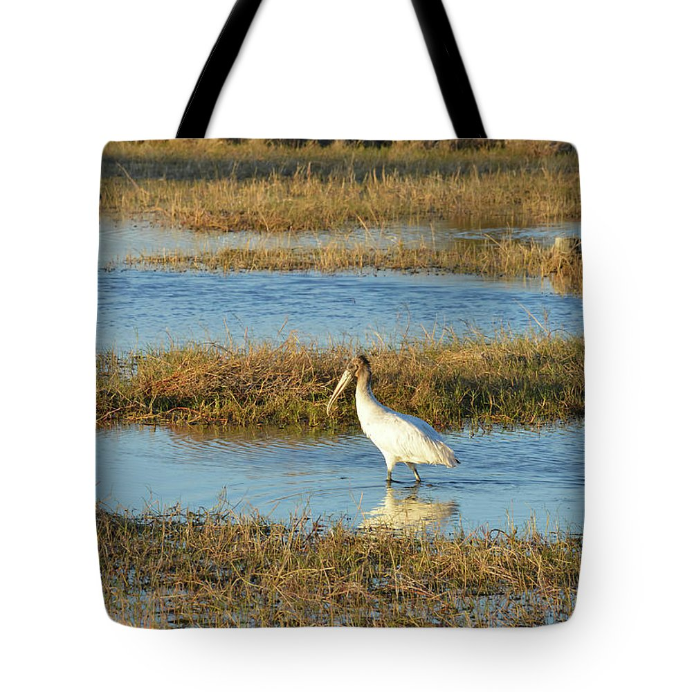 The Everglades Tote Bag featuring the photograph Wading Wood Stork by Bob Phillips