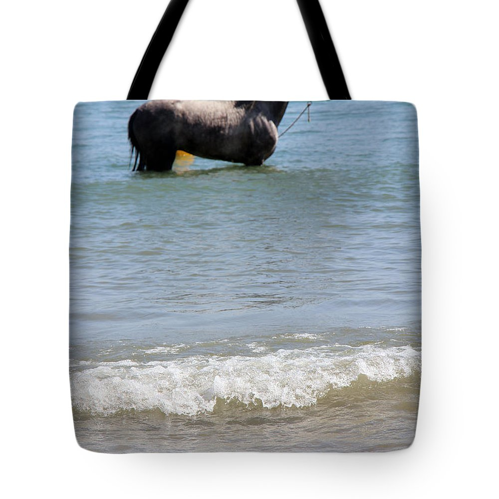 Horse Tote Bag featuring the photograph Wait Game by Munir Alawi