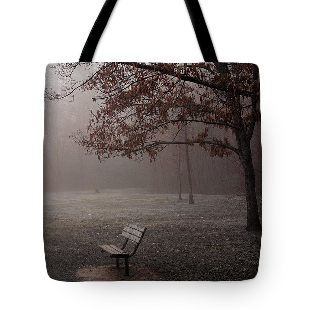 Bench Tote Bag featuring the photograph Waiting by Ayesha Lakes