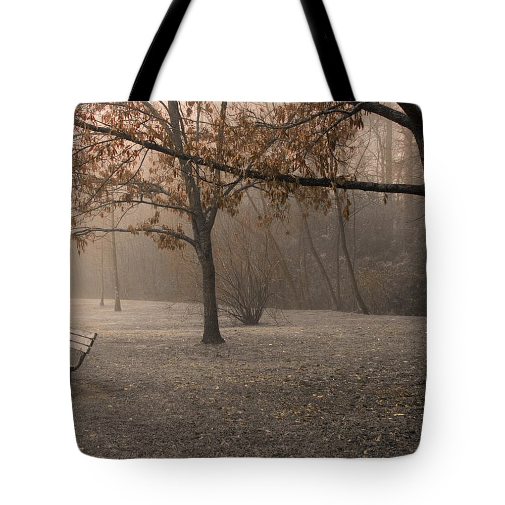 Park Tote Bag featuring the photograph Waiting For God by Ayesha Lakes