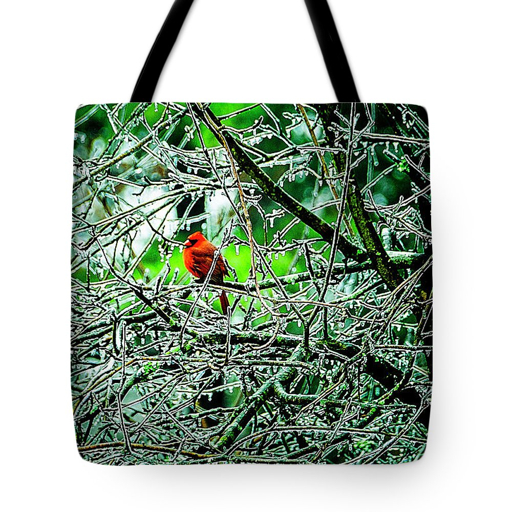 Winter Tote Bag featuring the photograph Waiting For The Thaw by Gerlinde Keating - Galleria GK Keating Associates Inc