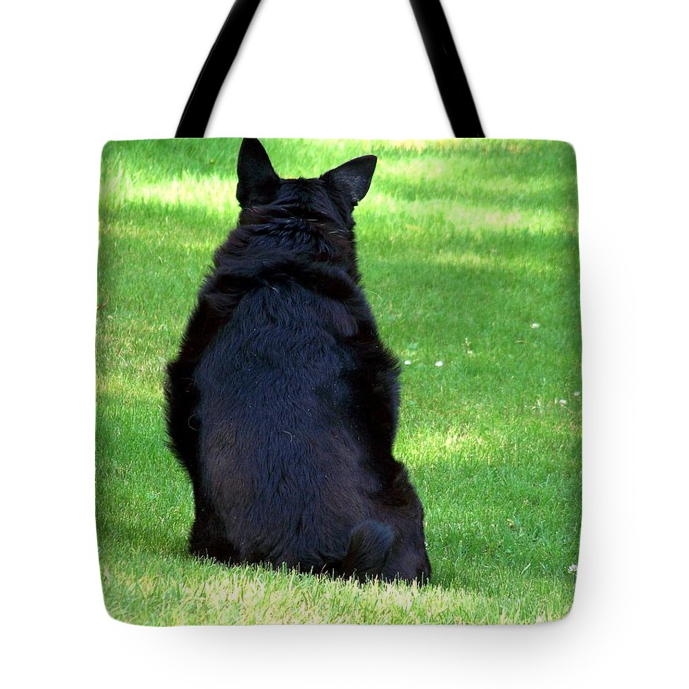 Dog Tote Bag featuring the photograph Waiting by Jai Johnson