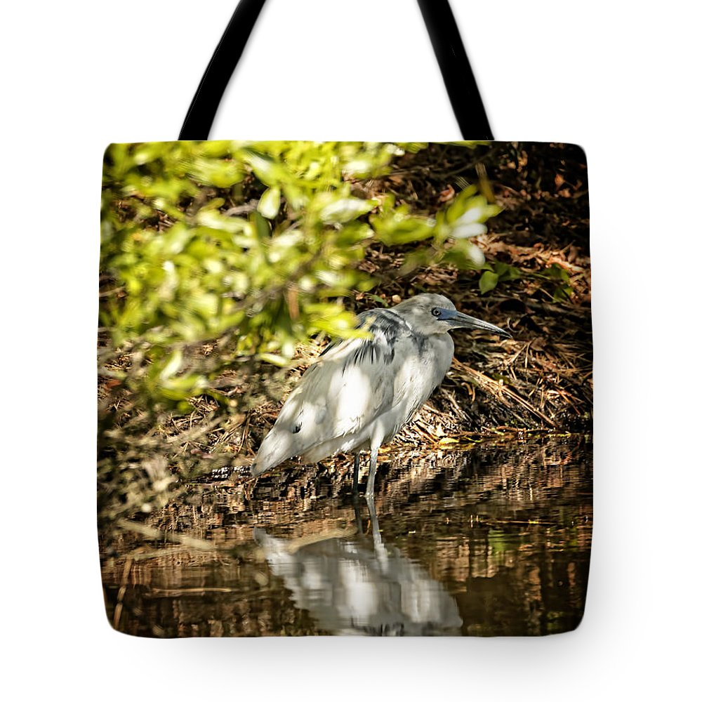 April Tote Bag featuring the photograph Waiting To Be Blue by Phill Doherty