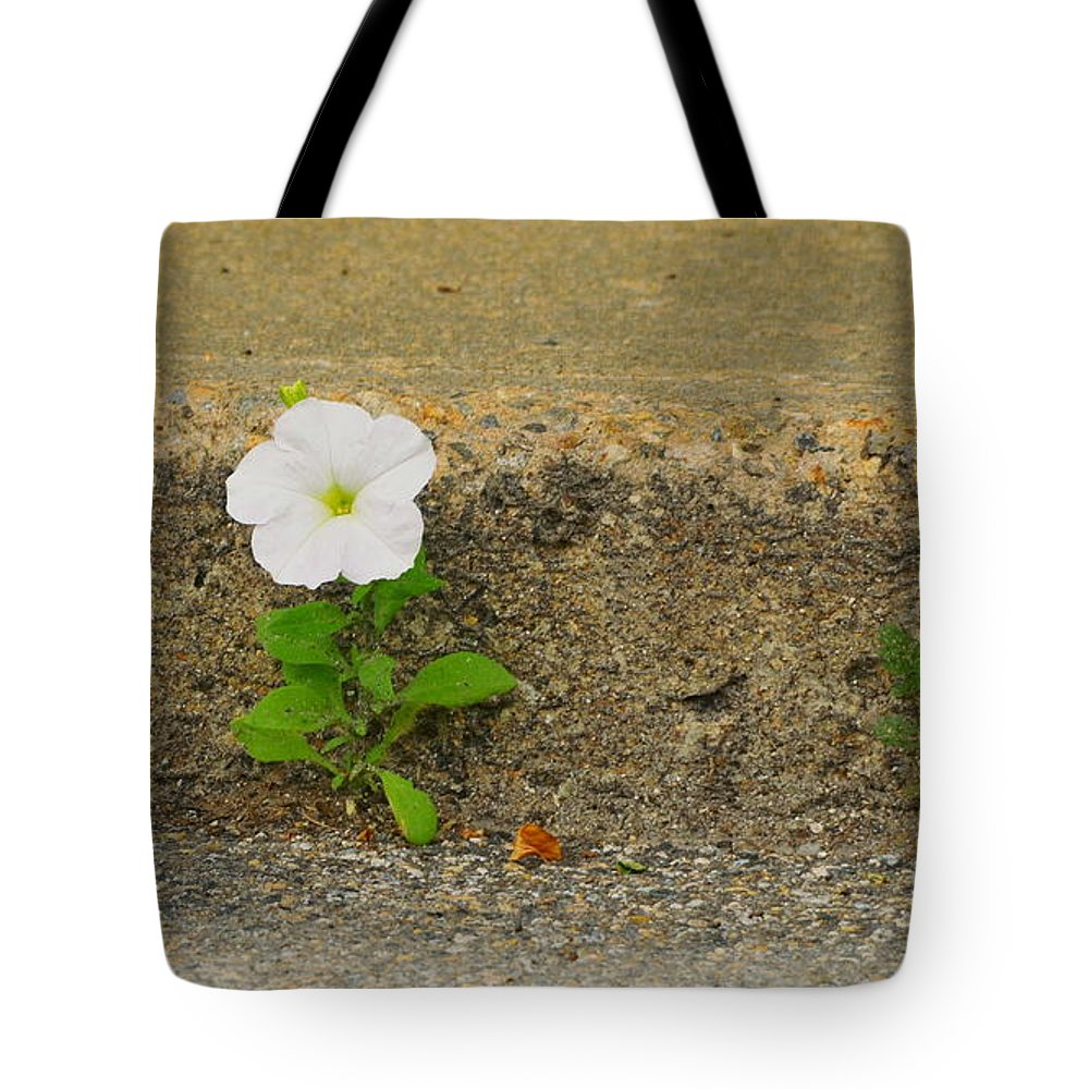 Flower Tote Bag featuring the photograph Walk Of Life by Harry Moulton