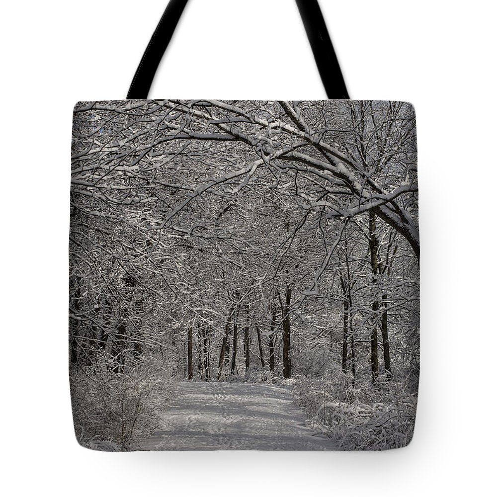 Woods Tote Bag featuring the photograph Walking In The Woods by David Bearden