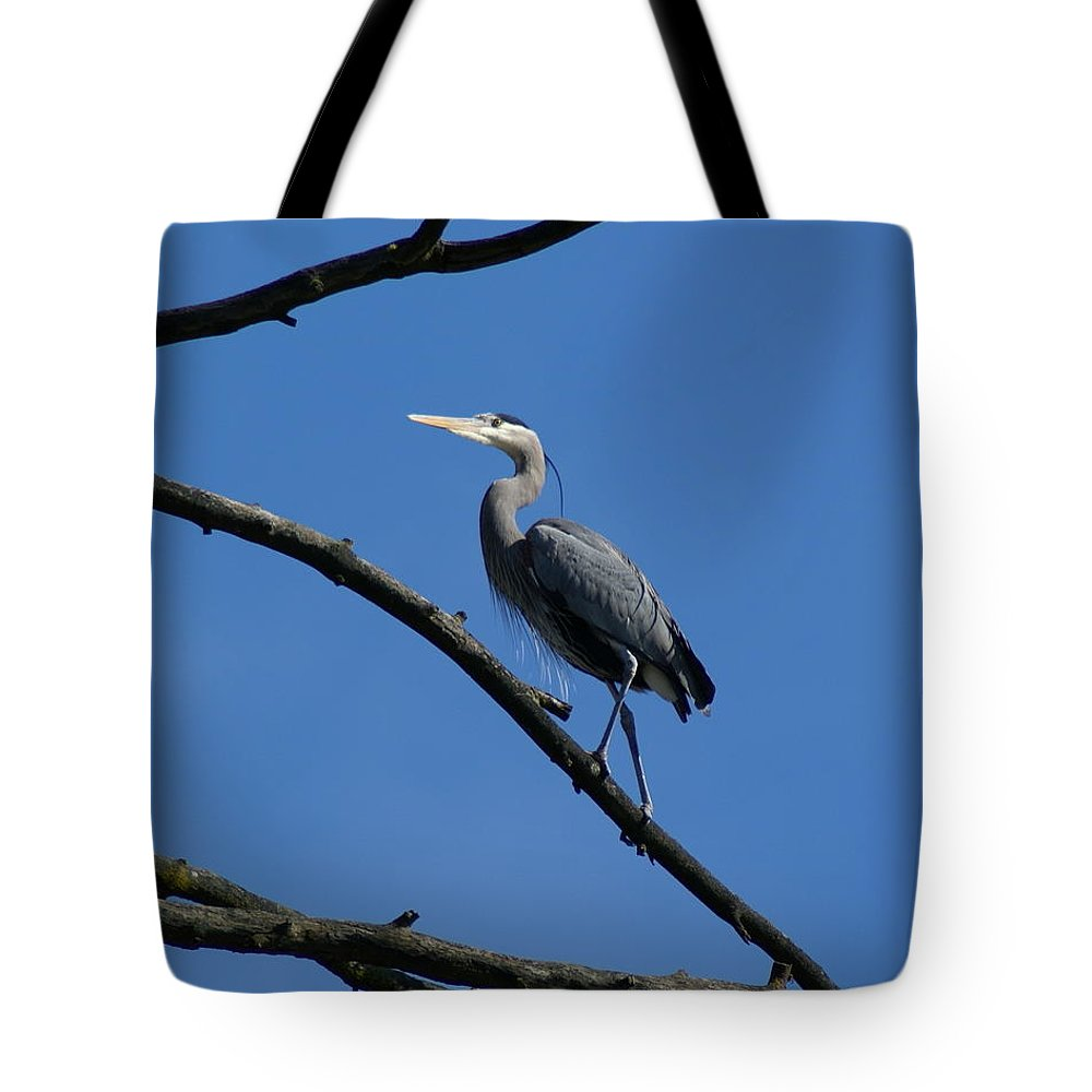 Birds Tote Bag featuring the photograph Walking The High Branch by Ben Upham III