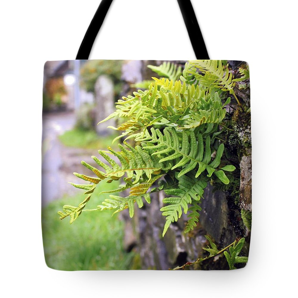 England Tote Bag featuring the photograph Wall With Fern by Karin Kohlmeier