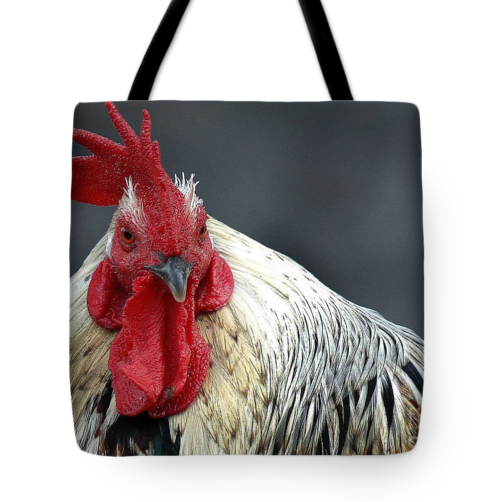 California Scenes Tote Bag featuring the photograph Wanna Borrow My Comb by Norman Andrus