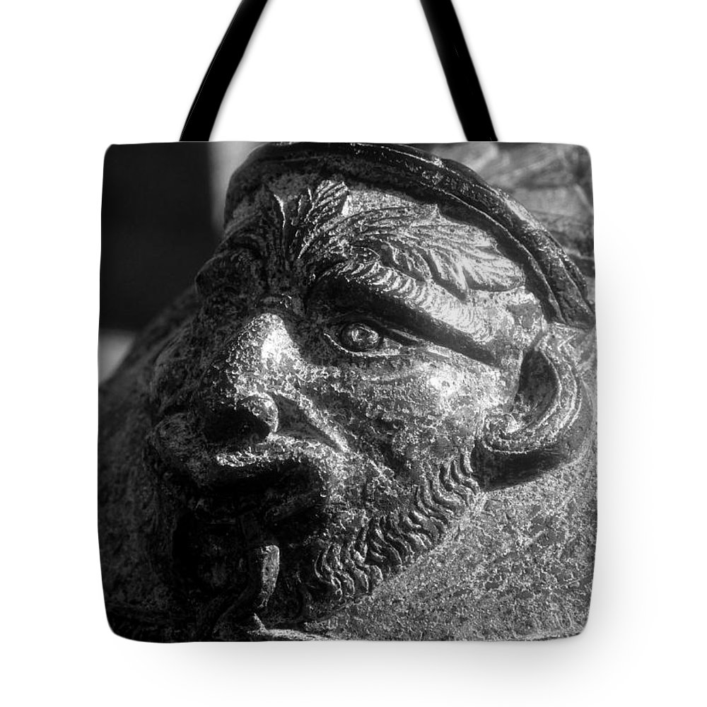 Cannon Tote Bag featuring the photograph War Face by David Lee Thompson